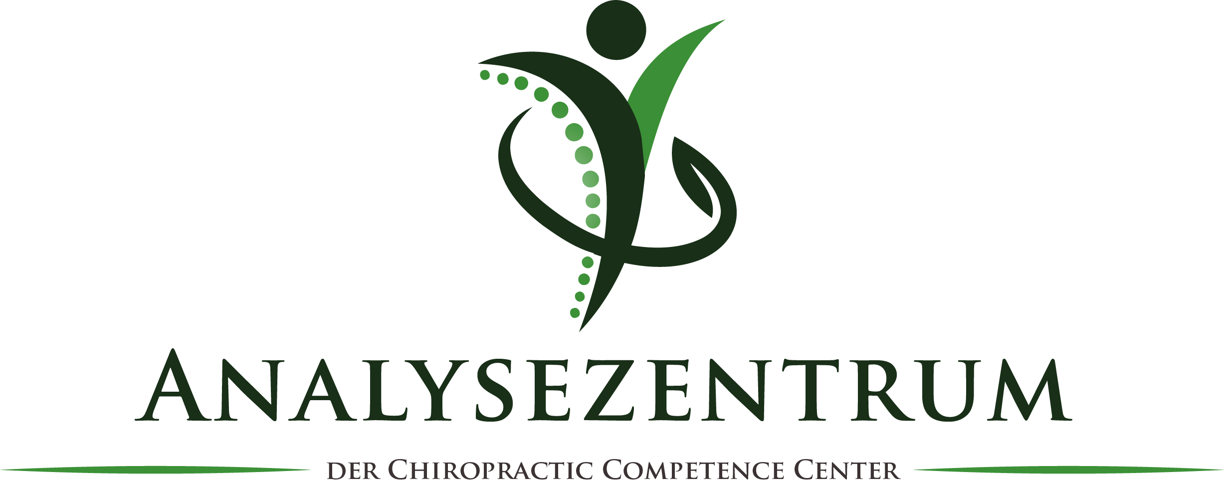 Analysezentrum der Chiropractic Competence Center